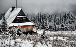 content_winter-997781_1280.jpg